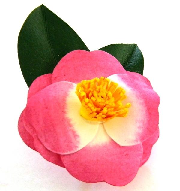 Pink Plantation Brooch