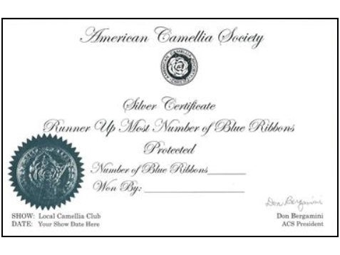Silver Certificate (Sweepstakes)