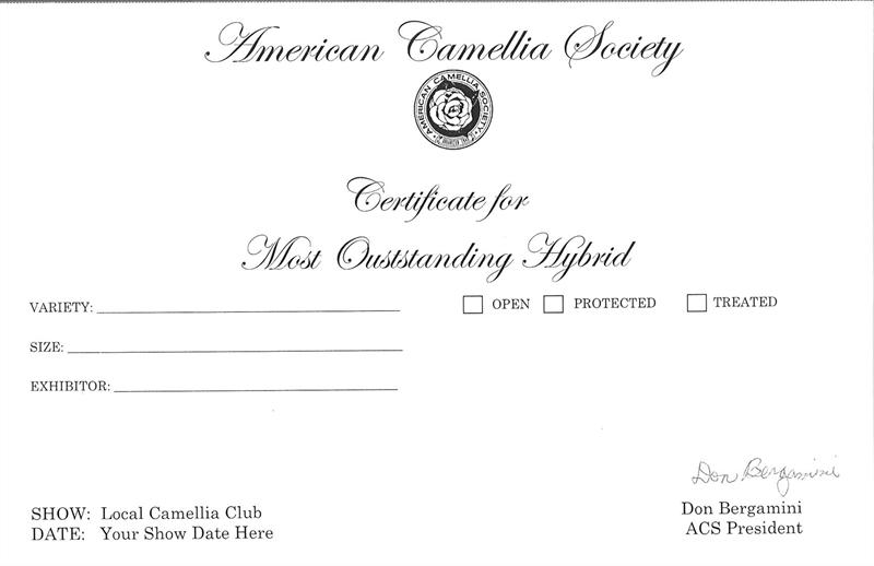 Hybrid Certificate