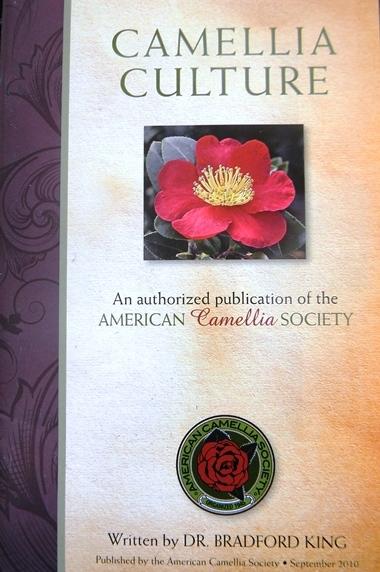 Camellia Culture