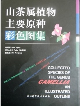Collected Species of the Genus Camellia: An Illustrated Outline