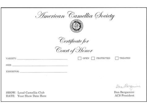 Court Of Honor Certificate