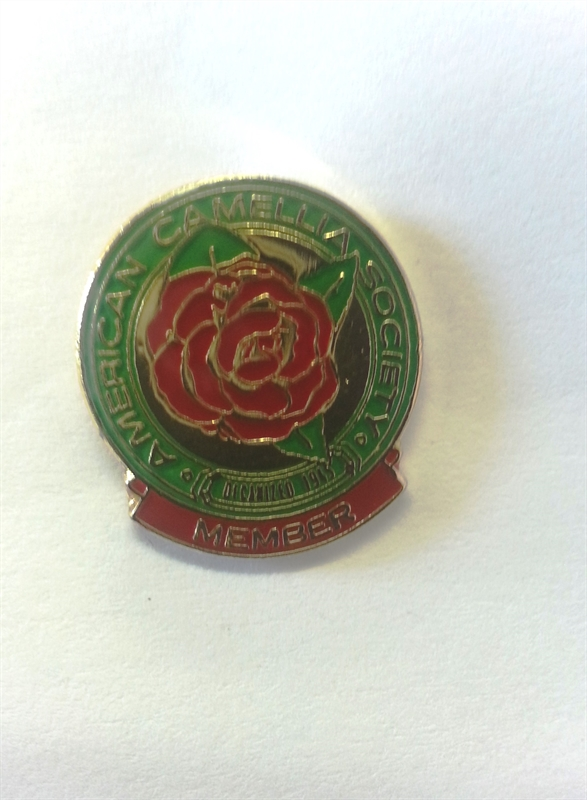 Lapel Pin for ACS Members