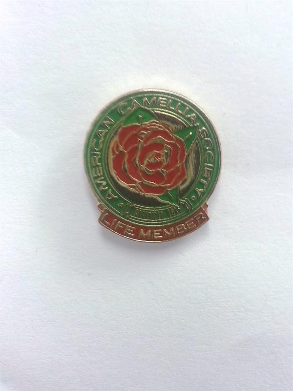 Lapel Pin for ACS Life Members