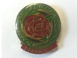 Lapel Pin for ACS Presidents