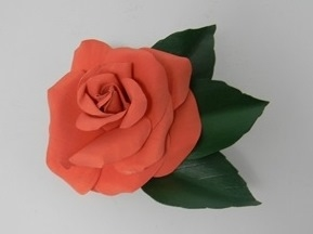 Peach Rose Pin