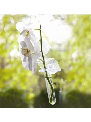 Wall Flower Bud Vase American Camellia Society