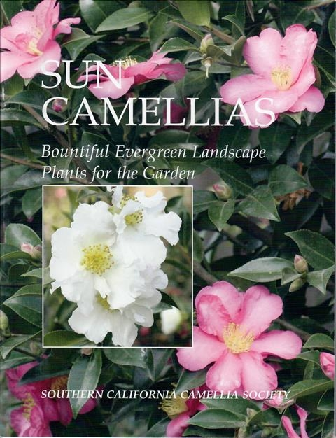 Sun Camellias: Bountiful Evergreen Landscape Plants for the Garden