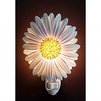 Aster Nightlight
