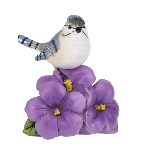 Blue Jay on Violet