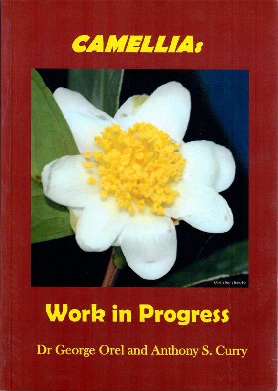 Camellia: Work In Progress