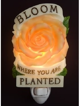 Bloom Where You Are Planted Nightlight